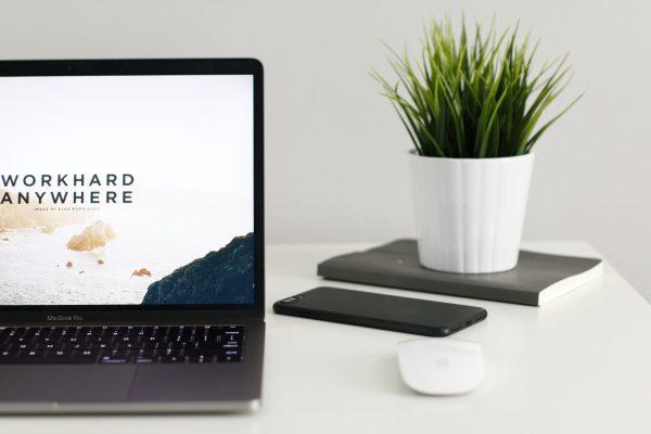 musiview skype lesson